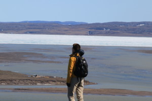 Researcher Greg Lehn takes in the view of Coronation Bay. On the horizon, ice still clogs the coastline. (Photo credit: John Kelly)