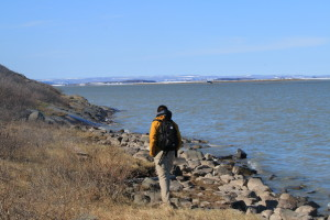 Researcher Greg Lehn walks along the shore of the Coppermine River. (Photo credit: John Kelly)