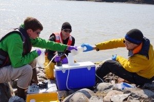 Water sampling requires teamwork and coordination. Gloves are also necessary to make sure we do not contaminate the samples. (Photo credit: Rob Macdonald)